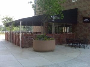 Patio Canopies Feature